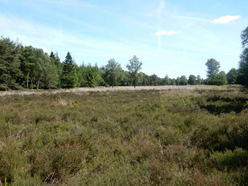 Fietsroute Harderwijk en omgeving