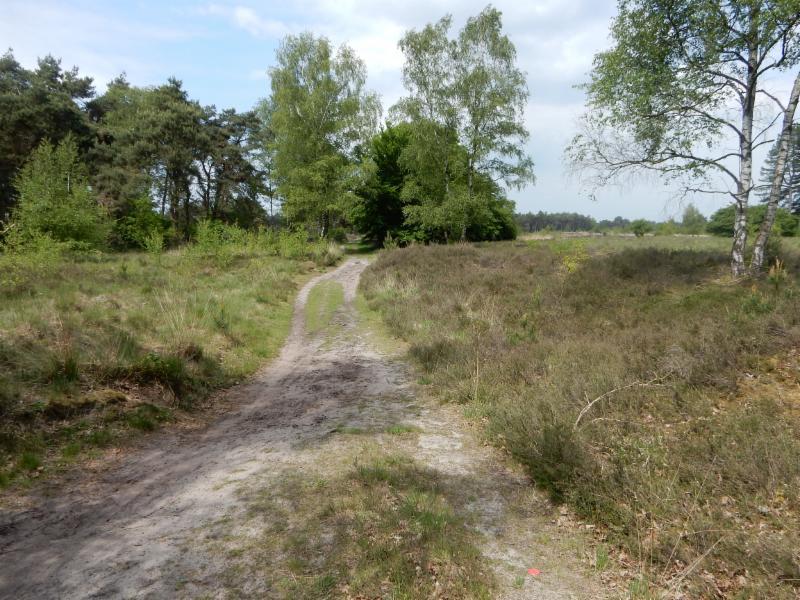 Fietsroute Heeze en omgeving