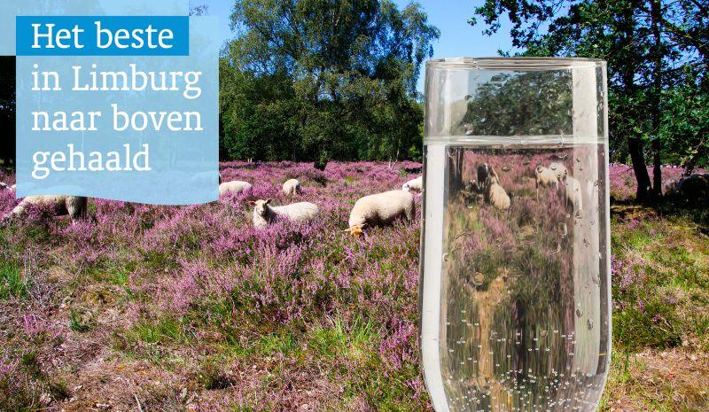 wml route.nl montage logo 19