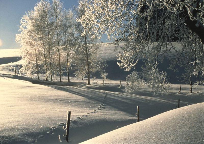 dzt hohenstein klingenthal winter