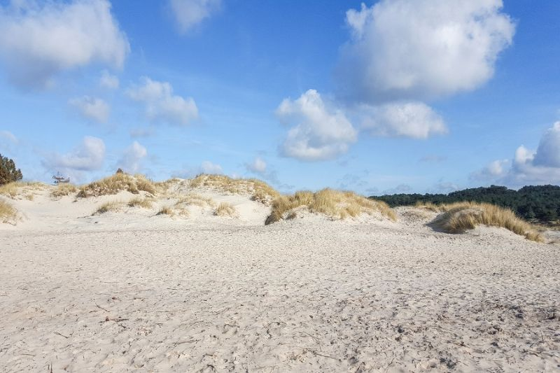 boswachterspad-schoorlse-duinen-zandverstuiving-baaknol