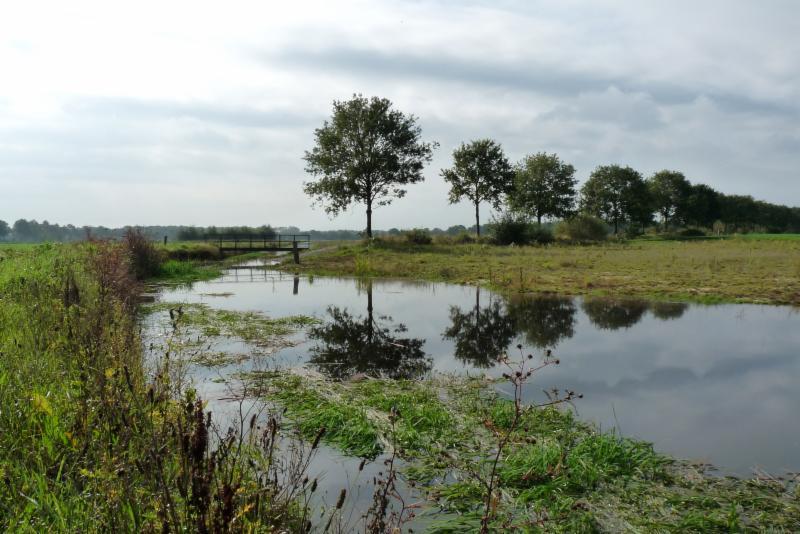 Ven Weeldse Heide
