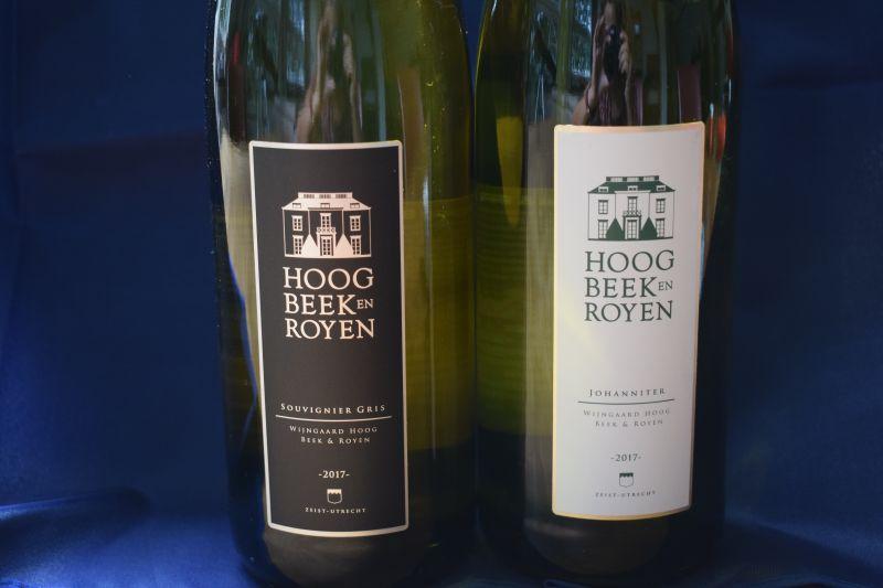 Wijngaard Hoog Beek & Rooyen dsc_0297
