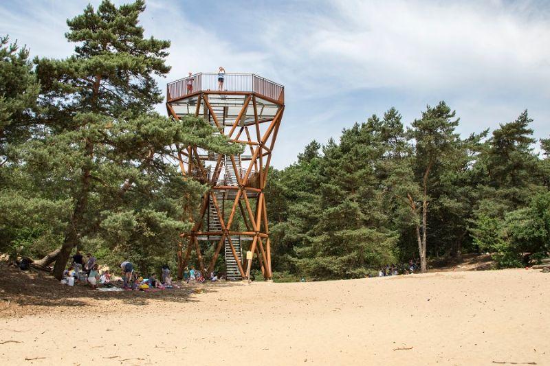 boswachterspad-veluwe-kootwijk-uitkijktoren