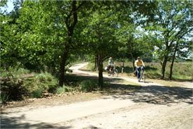 VVV Eersel fietsen