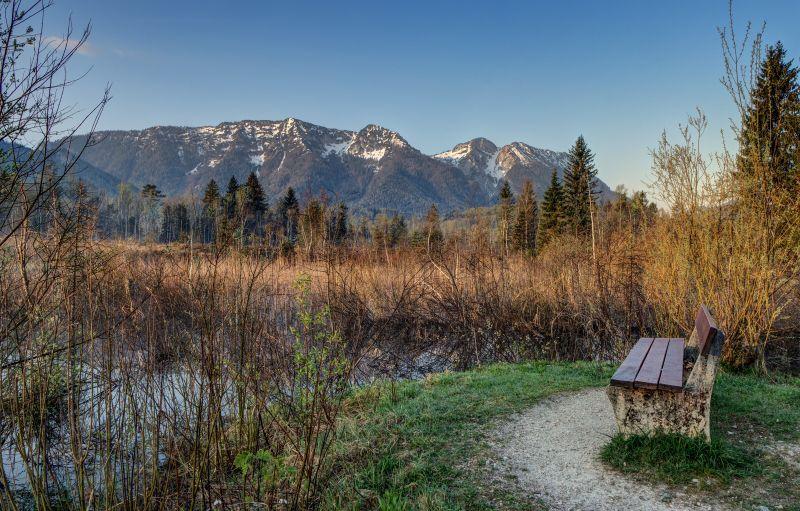 Inzell fruehling Moor erlebnis pfad panorama_jh