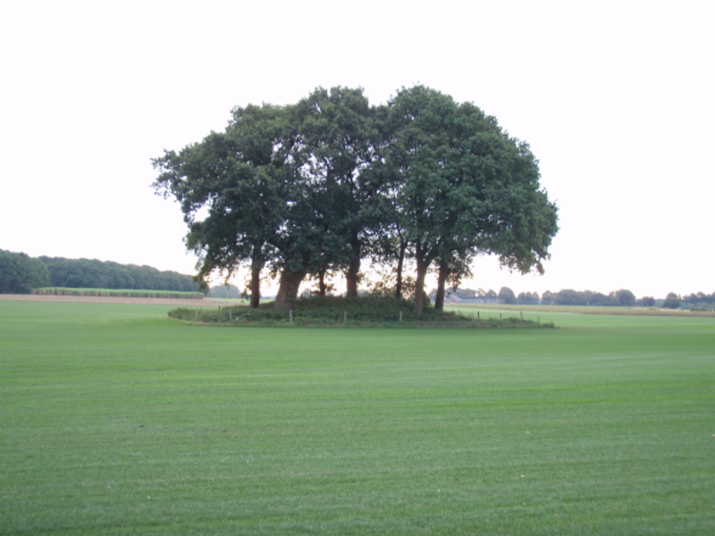 Grafheuvel Zuider Esch Drouwen