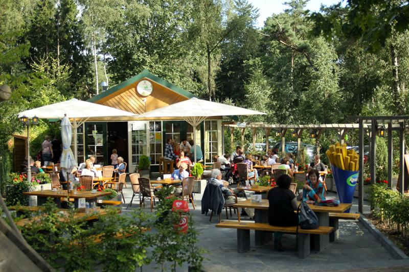 Natuurdiorama Holterberg terras