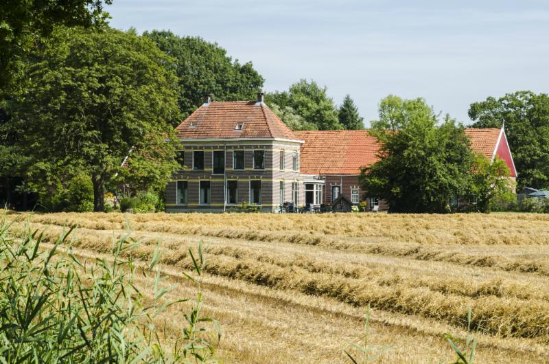 NL Scholtenboerderij in zomerhooilandschap-II