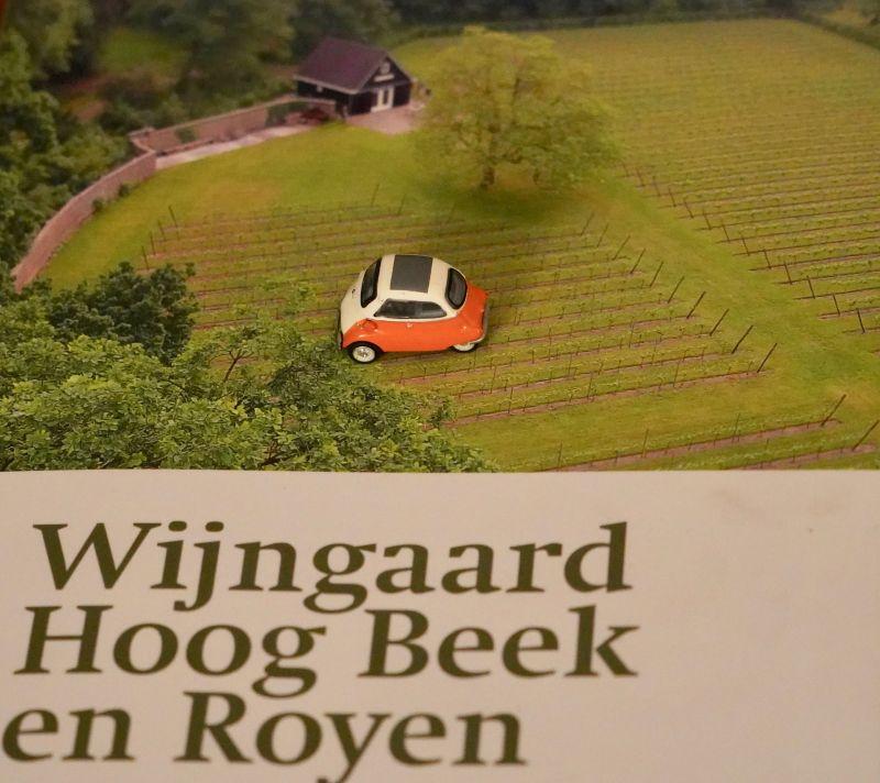 Wijngaard Hoog Beek & Rooyen dsc02947
