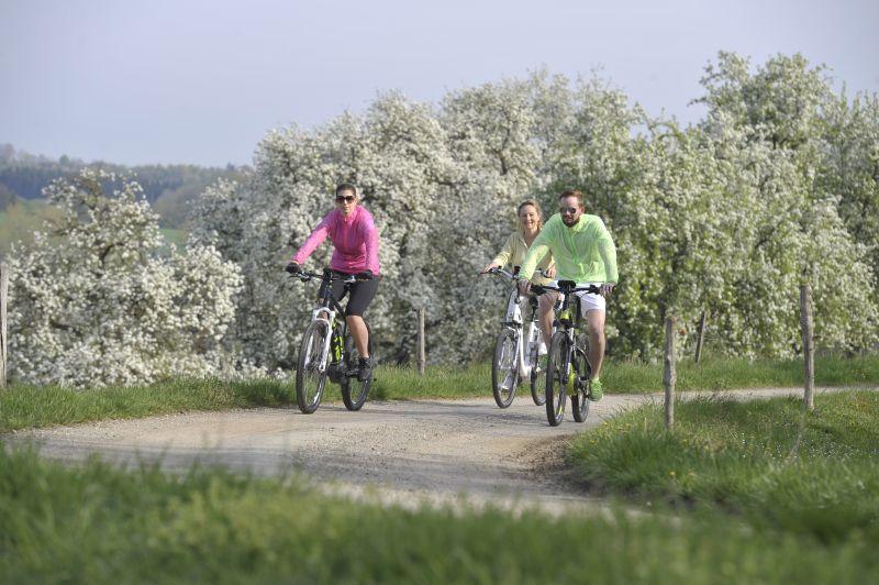 Passau - Apfel-Radl-Weg