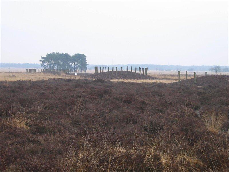Grafheuvels, Regte Heide