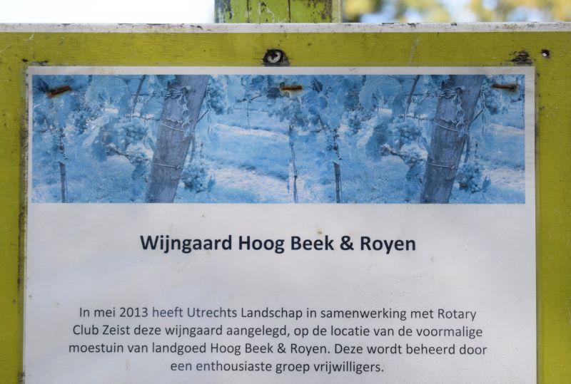 Wijngaard Hoog Beek & Rooyen dsc_0024