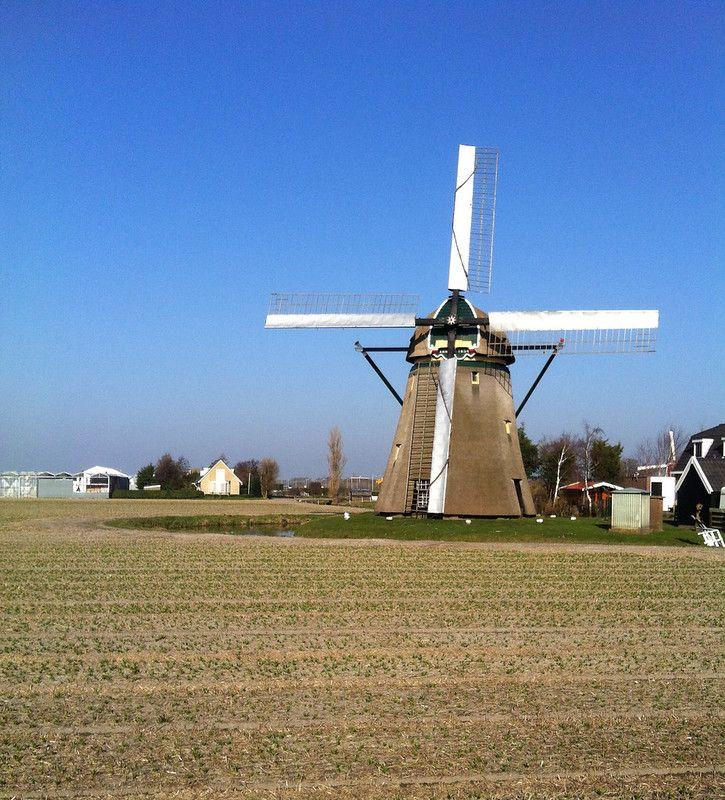 Hogeveensemolen, Noordwijkerhout