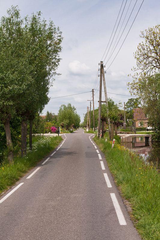 Foto: Op ontdekkingstocht door de Reeuwijkse Plassen