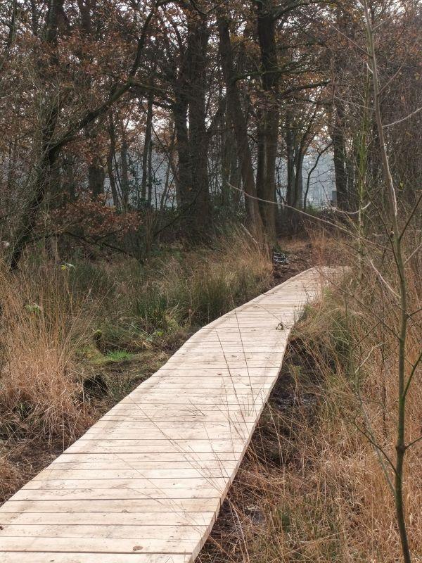 boswachterspad-achterhoek-knuppenbrug-laarzenpad