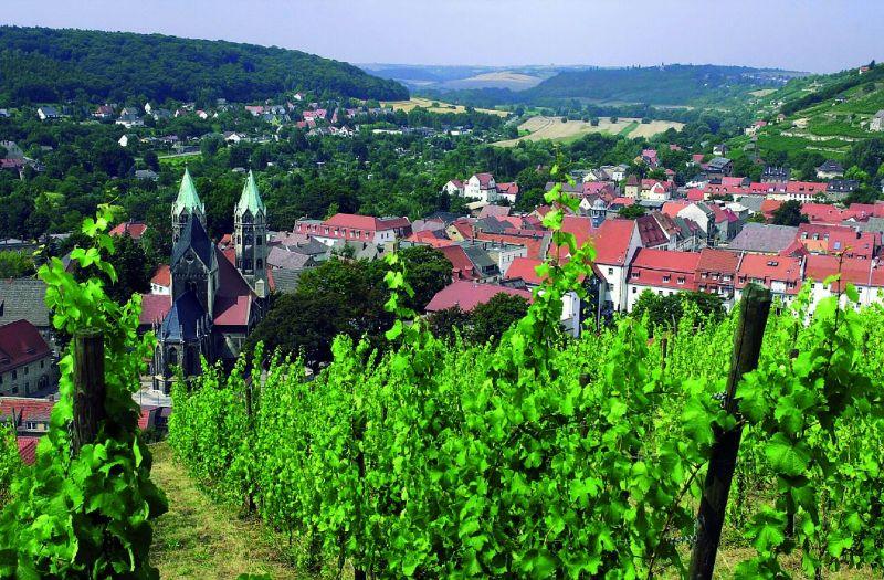 Saale-Unstrut route - Blick auf Freyburg (Unstrut)-489