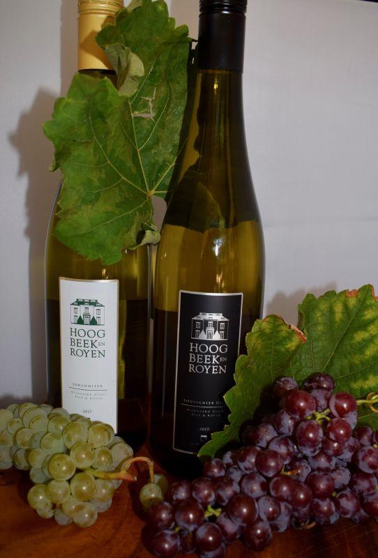 Wijngaard Hoog Beek & Rooyen dsc_0309