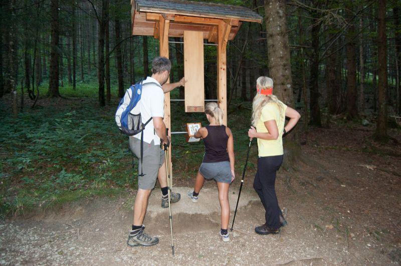Inzell sommer familei Bergwald-Erlebnispfad station raten
