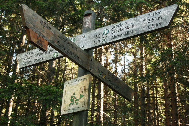 Karstweg - Wegweiser im Harz-4458