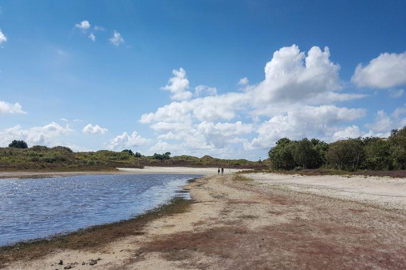 boswachterspad-schoorlse-duinen-vogelmeer-schoorl