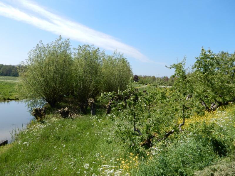 Fietsroute Geldermalsen en omgeving
