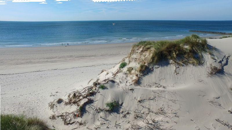 boswachterspad-meeuwenduinen-strand-westerschouwen