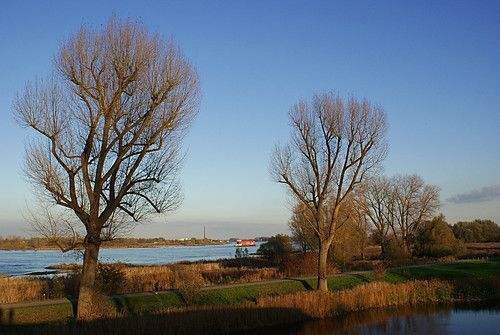 The river Waal