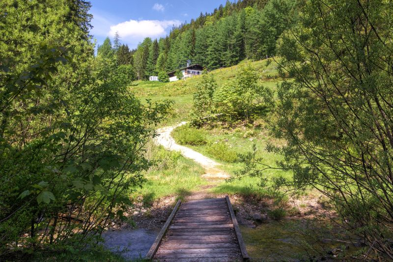 Inzell - Drei-Almen-Wanderung - Weg zur Bichleralm - Sommer wandern Almhuette bichler alm_jh