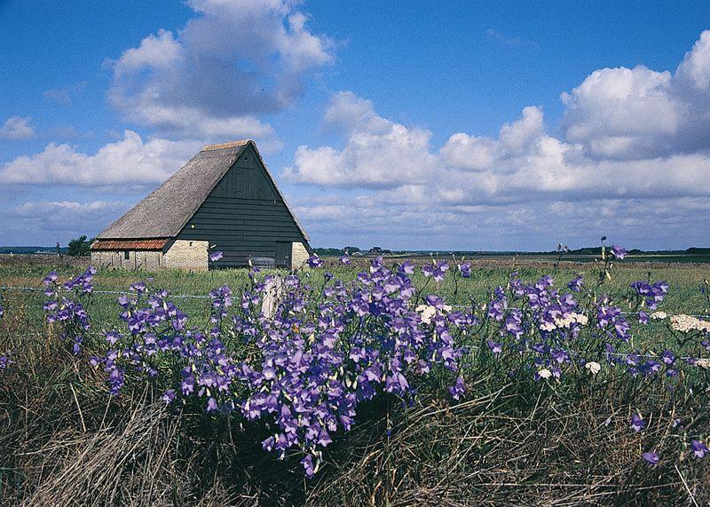 Foto: Ontdek het Texelse Landschap