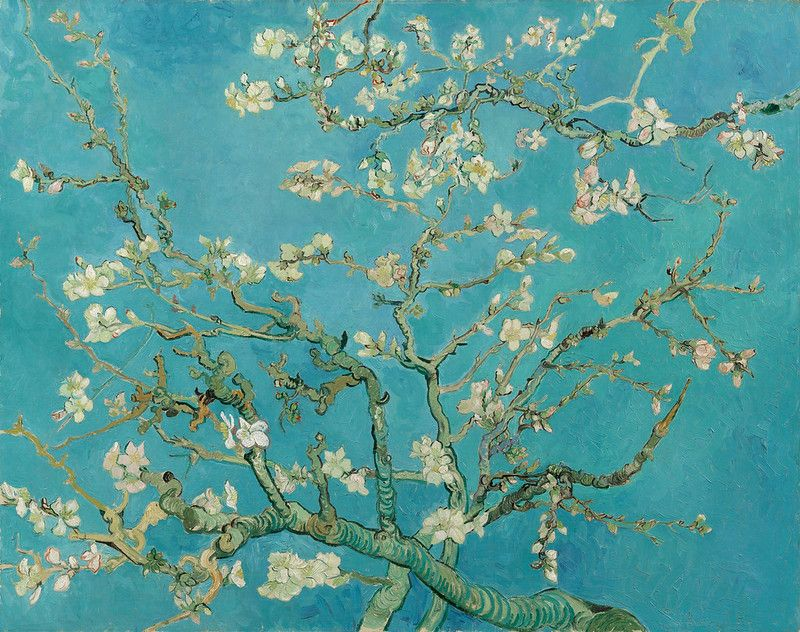 17024-Van-Gogh-Museum