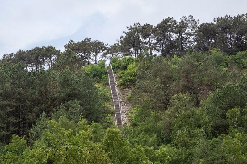 boswachterspad-schoorlse-duinen-uitzicht-schoorl