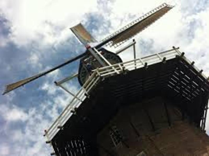 daams molen