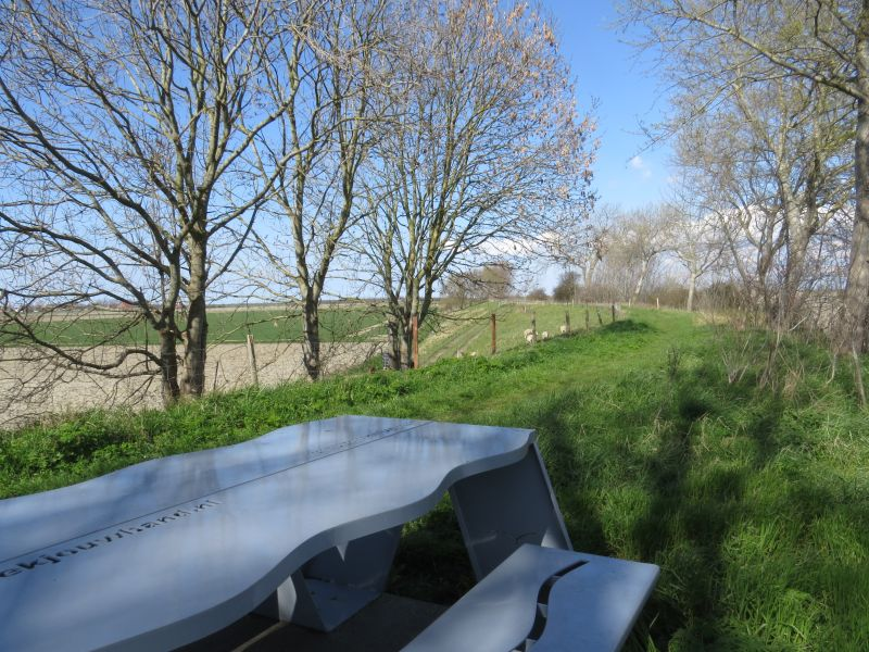 picknickplek onderweg tussen Noordgouwe en Zonnemaire