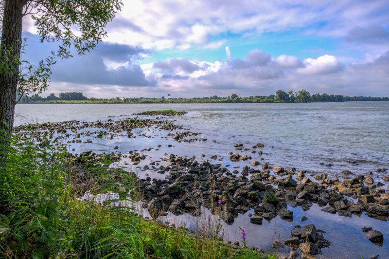 Door de grienden langs de Oude Maas