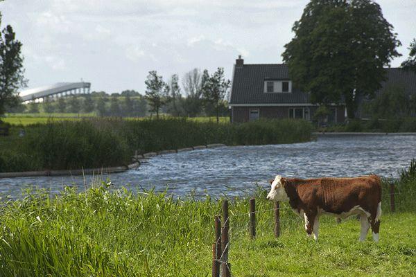 Buytenpark Zoetermeer