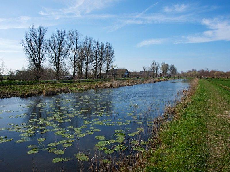 Natuurgebied langs de Wagendijk