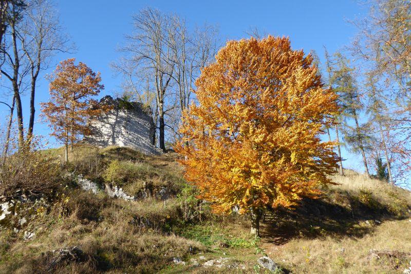 Oberaudorf - Zur Ruine Auerburg - Auerberg 06