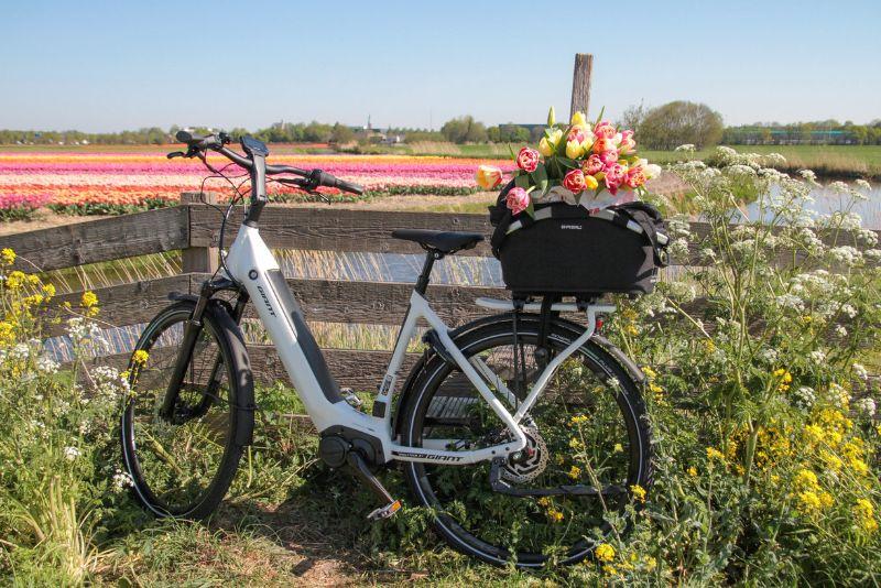 Fietsen op de Hollandse Bloemenroute