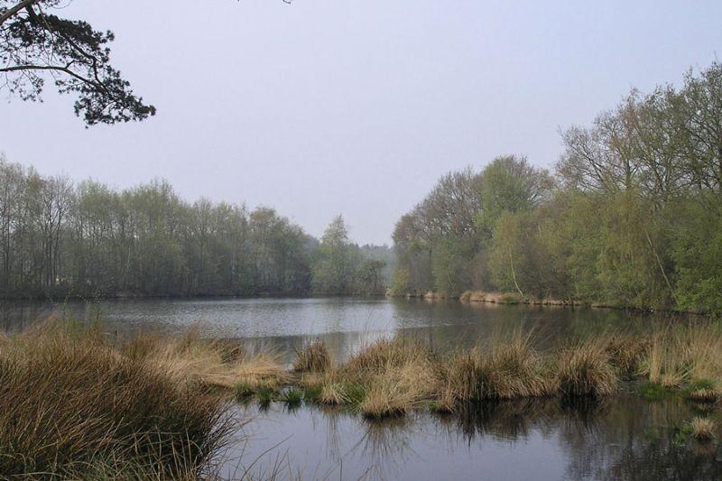 boswachterspad-achterhoek-laarenpad-ruurlo-grote-former