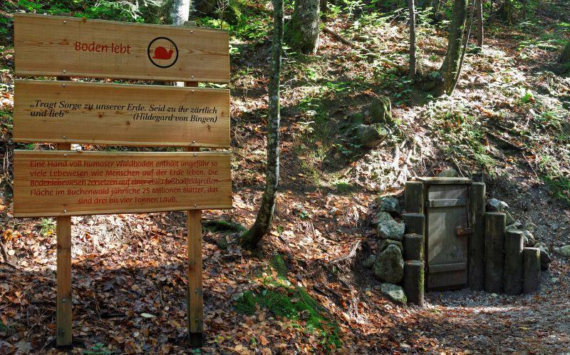 Inzell sommer Bergwald Erlebnispfad tafel 02_jh