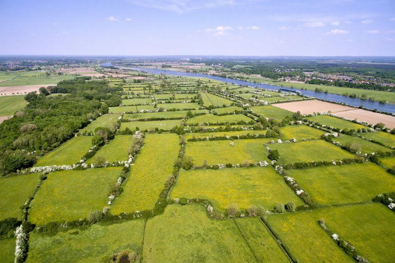 Maasheggen-gebied-vereniging nederlands cultuurlandschap