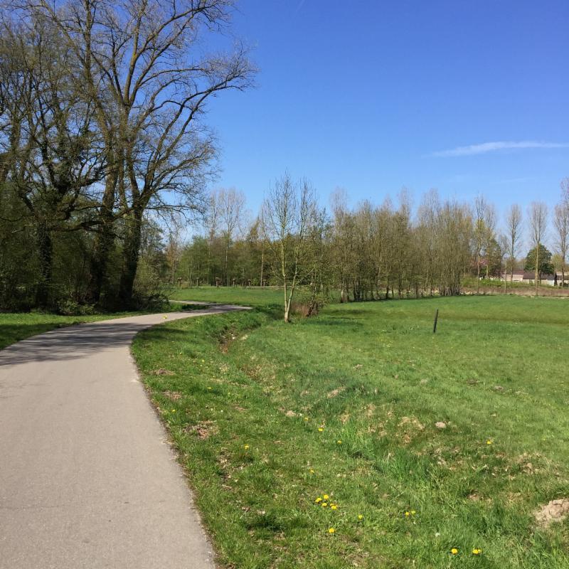 Groen in Eindhoven