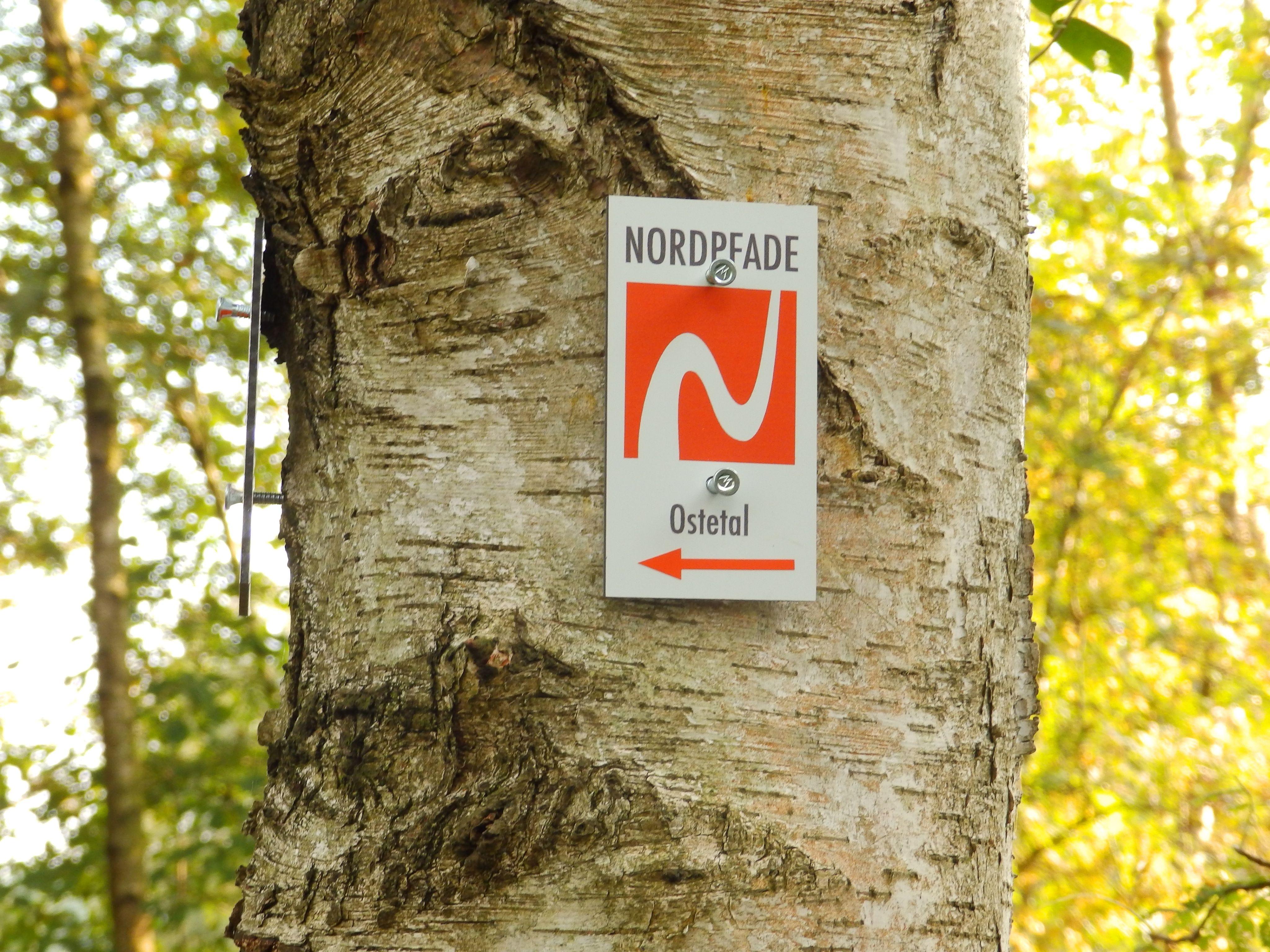 North path H�lzerbruch-Mals