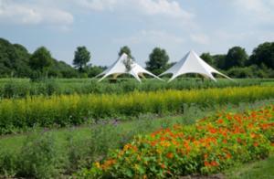 A. Vogeltuinen/ Zorgboerderij Westbroek