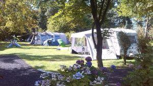 Camping Zwinderen