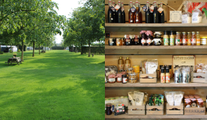 Boerderijwinkel en -camping De Meet