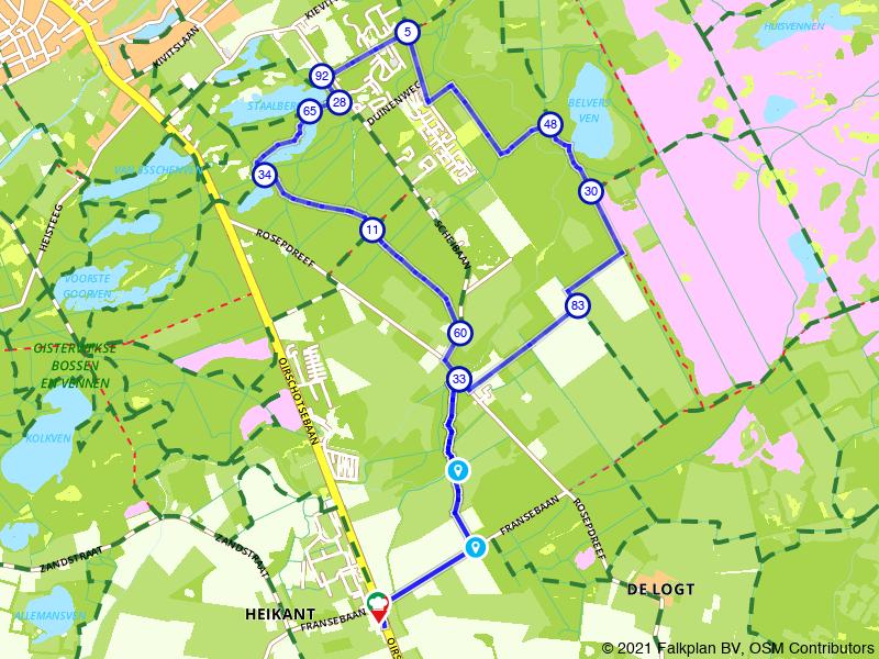 Wandelen door de bossen bij Oisterwijk