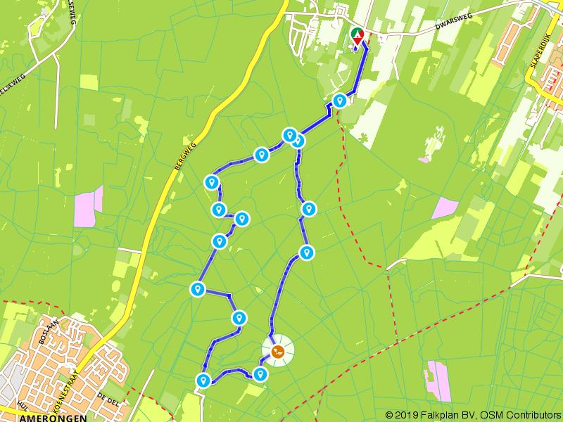 Rondje Amerongse Bos en Eenzame Eik