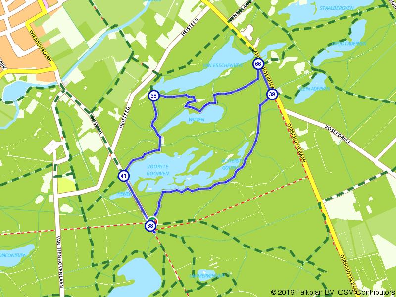 Wandelen door de Oisterwijkse bossen